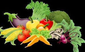 ομάδα λαχανικών_LongevityWay